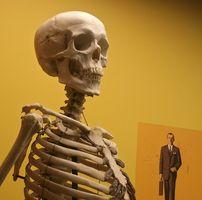 Medisinering for Osteopeni