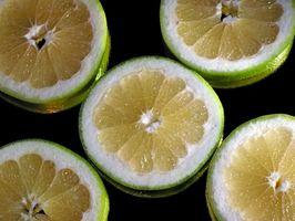 Grapefruktkjerneekstrakt for Lyme sykdom