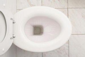 Hva er normal hyppighet av vannlating?