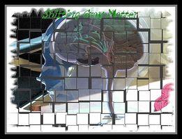 Hvit Matter Disease & Decision Making