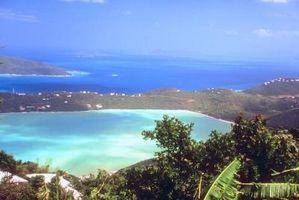 Hvilke ting ville du trenger hvis du ble sittende fast på en øy?