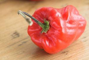 Hvilke vitaminer er i Cayenne Peppers?