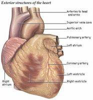 Hvordan er hjertesykdom behandlet?