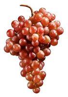 Hvilke Frukt & Grønnsaker inneholder Resveratrol?