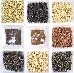 Ernæring i Stekt Soy Beans