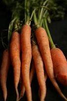 Helsemessige fordeler av gulrøtter