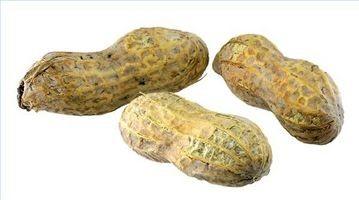 Hva slags mat inneholder Biotin?