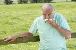 Tegn og symptomer på cystisk fibrose i Voksne