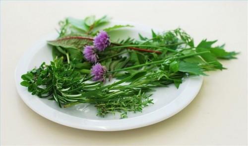 Herbal Cures for Hikke