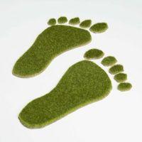 Hvordan Bestem Ecological Footprint i en befolkning