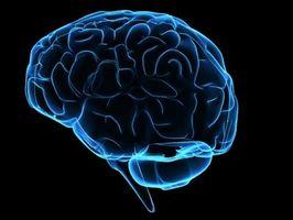 Sykdommer som forårsaker hukommelsestap