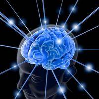 Hva er funksjonen av serotonin i kroppen?