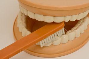 Hvordan ta Clindamycin for en tann infeksjon & Cheek fortsatt hoven etter 48 timer