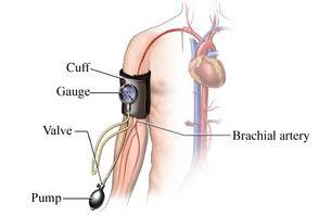 Hvordan Alkohol og koffein påvirke blodtrykket