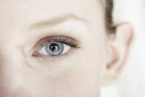 Hvordan søke Eye Tracking