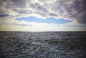 Effekter av Drinking Sjøvann