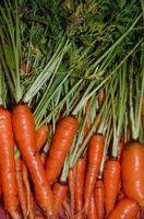 Hvordan finne vitaminer i maten vi spiser