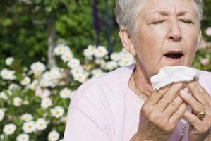 Hvordan velge en Over-the-Counter Allergi medisin?
