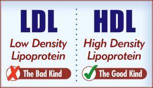Hva er de forskjellige typer kolesterol?