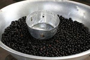 Hvor mye Acai Berry bør du drikke?