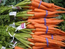 Allergi mot rå gulrøtter