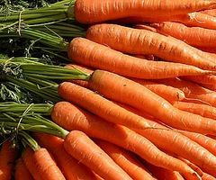 Hvordan legge til gulrøtter til kosthold og vet om dens fordeler