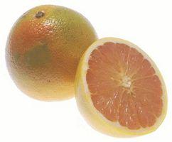 Grapefrukt for Hypertensiv Treatment