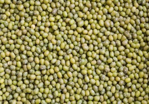 Ernæringsmessige verdier av grønne Mungbønner