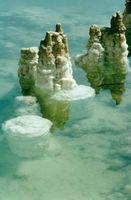 Måter som Amatører kan bruke Sea Minerals for forskjellige ting