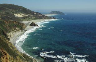 Hva Påvirker havets økosystem?