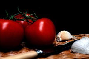Aktiviteter for å lære barn om økologisk mat