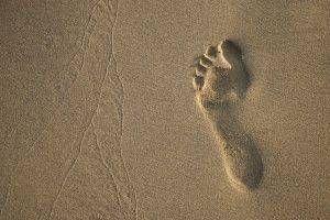 Hjem rette for Foot Pain