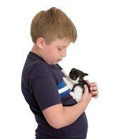 Helseeffekter av kjæledyr i hjemmet