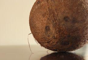 Generelle Bruk av Coconut Oil