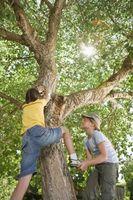 Hvilke typer aktiviteter er passende for barn med ADHD?
