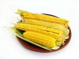 Typer grønnsaker tillatt på Karbohydrat Addict Diet