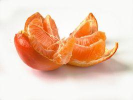 Mandarin Oranges & Gastroparesis