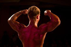 Balansert kosthold tips for Body Building