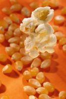 Slik fjerner en Popcorn Kernel Fra Nose
