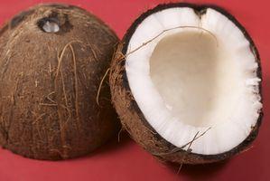 Hvordan virker Coconut Oil Bli hydrogenert?