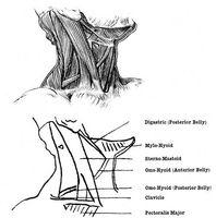 Pain Relief for en sår hals