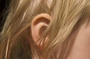 Er Female menneskelige øret forskjellig fra Male menneskelige øret?