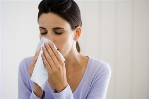 Hvordan leve med allergi mot dyrehår