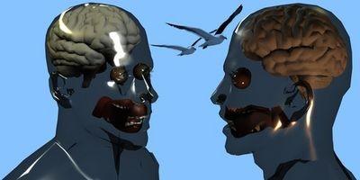 Hvordan Test Dopamin & Serotonin Levels