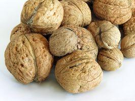 Hvordan å fjerne mugg fra Nuts