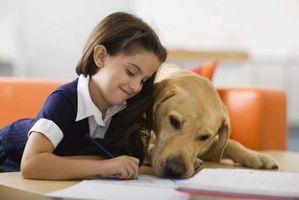 Hvordan finne ut om et barn er kvalifisert for en gratis hund til å hjelpe med spesielle behov
