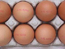 Hvordan identifisere Egg Allergi og behandle symptomene